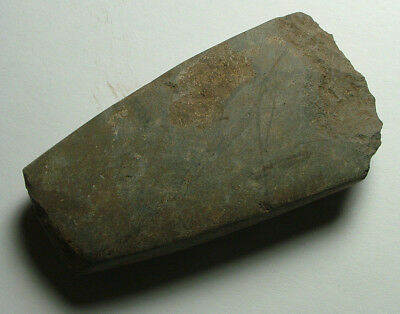 RARE Genuine ancient Neolitic STONE hand axe celt tool artifact patina Intact