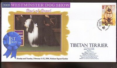 W/M 2008 DOG SHOW BEST of BREED COV, TIBETAN TERRIER