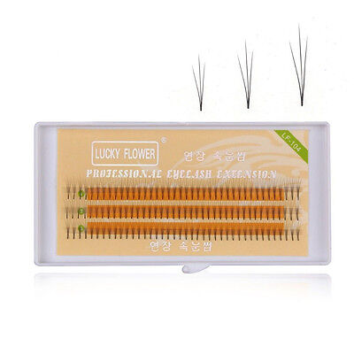 10pc Exclusive Individual Imitation Mink Lashes 3D W LASH Eyelash Extension tool