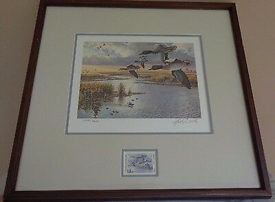 Framed & Signed Lot 8 1986 - 1993 Texas Duck Stamp Prints #2352 / Print Set