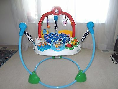 LOCAL PICK-UP ONLY- Fisher Price Laugh and Learn Jumperoo Bouncer #M8930 (Video)
