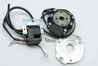 PVL complete analog System for Honda CR 500 incl. Adapterplate