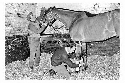 pt8089 - Beverley , Kings Arms Stables , Yorkshire 1965 - photograph 6x4