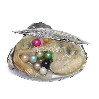 Individual Wrapped Akoya Oysters with Large Wish 1 PCs Color Pearls 7-8mm Gifts