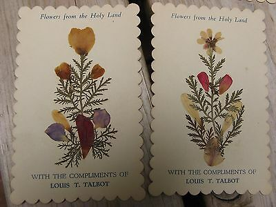 "antique ""Flowers from the Holy Land"" cards~10~early 1900's~Louis T. Talbot~vtg~"