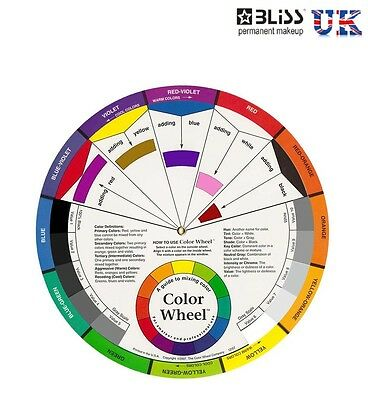 Micropigmenation COLOUR WHEEL - ARTIST MIXING GUIDE - LARGE Tattoo Colour Theory