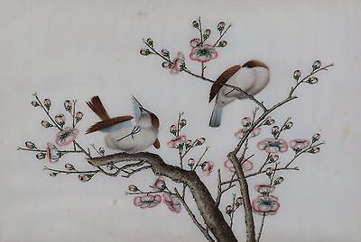 Fine Antique Chinese Rice Pith Paper Painting Two Sparrows