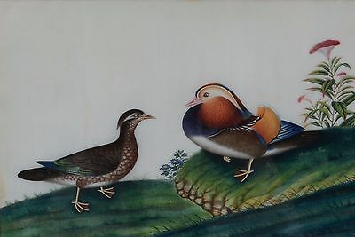Fine Antique Chinese Rice Pith Paper Painting Two Ducks