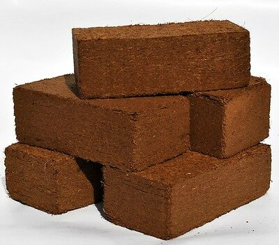 5 Pack of COIR BLOCKS BRIQUETTES Organic Coco Compost Peat Free NEW