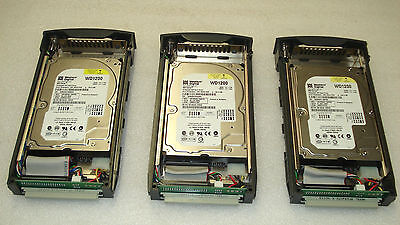 "Lot of 3 WESTERN DIGITAL WD1200JB-00EVAO 120GB 3.5"" IDE HARD DRIVE w/ Tray"