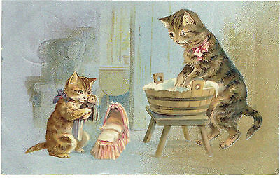 Helena Maguire Artist Old Postcard Anthropomorphic Cat Washing Clothes Baby Doll