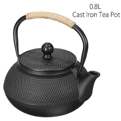 800ML Cast Iron Japanese Teapot With Infuser Strainer Water Kettle Pots Boiler