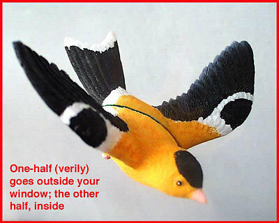 WINDOW MAGNET AMERICAN GOLDFINCH fly-thru glass gold finch bird effect,best gift