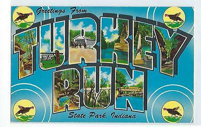 Greetings From Turkey Run State Park - Indiana - Vintage Postcard