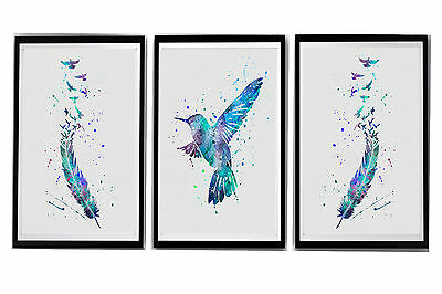 "Hummingbird & feathers Watercolour Wall Prints Set - 10"" x 8"", A4, A3"