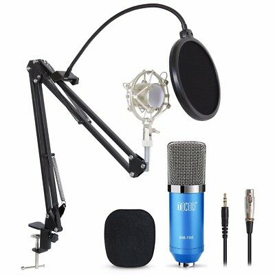 Condenser Microphone Mic Kit Studio Recording Mount Boom Stand FOR PC Computer