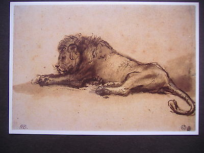 POSTCARD 'Recumbent Lion' artwork by Rembrandt  Unposted