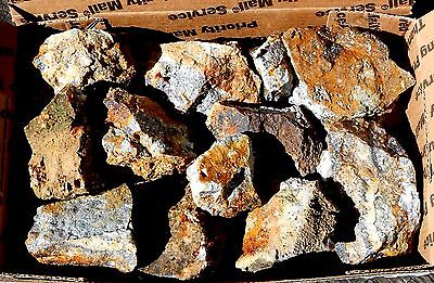 10 Gold & Silver Ore HUNKS Broken from the Mother Lode 61 oz  #947 Shop Clean Up