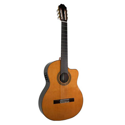Katoh MCG80CAE Solid Cedar Top Classical Guitar with Pickup