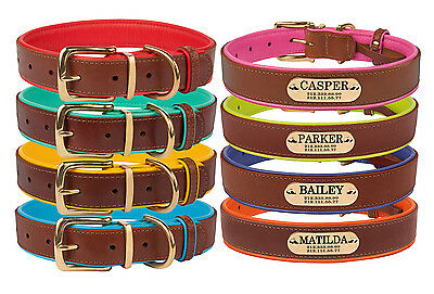 Leather Dog Collar Personalised Nameplate OPTIONAL Brass Buckle Soft Padded S L