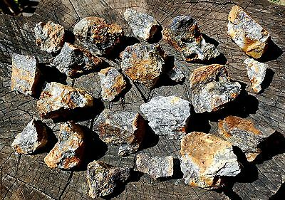 20 Gold & Silver Ore HUNKS Broken from the Mother Lode 57 oz  #944 Shop Clean Up