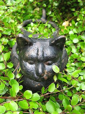 shabby~vintage cast iron CAT plant pot holder garden art CHIPPY paint primitive~