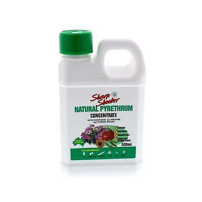 Pyrethrum Concentrate Fly Cabbage Moth Caterpiller Thrip etc Sharp Shooter 500ml