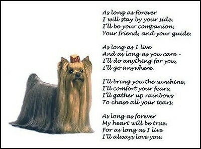 """Beautiful YORKSHIRE TERRIER print """"AS LONG AS FOREVER"""" art poem Yorkie dog NEW!"""