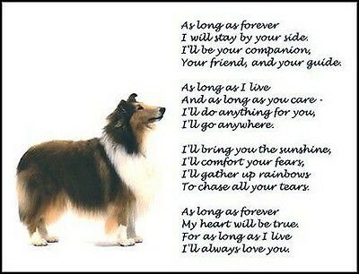 """Beautiful ROUGH COLLIE print """"AS LONG AS FOREVER"""" picture verse art poem NEW!"""