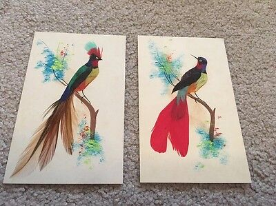 Pair Of Vintage Hand Made Bird Art Cards With Real Feathers Rare