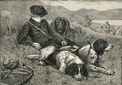 IRISH WATER SPANIEL WORKING SETTERS ANTIQUE ENGRAVED PRINT 1887 Hunting Shooting