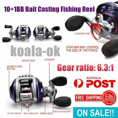 10+1BB Bait Casting Fishing Reel G-Ratio 6.3:1 Baitcasting Fishing Reel WS