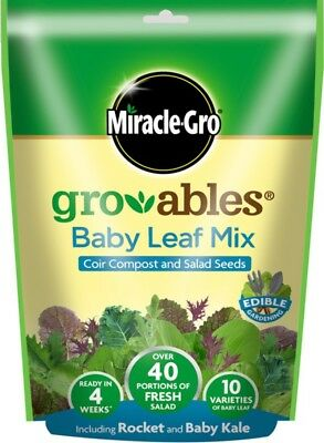 Miracle-Gro Groables Baby Leaf Mix 250g