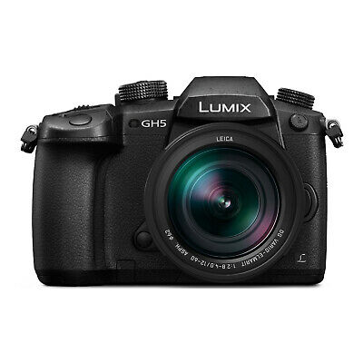 Panasonic LUMIX GH5 4K Mirrorless Camera with LEICA DG 12-60mm F2.8-4.0 Lens