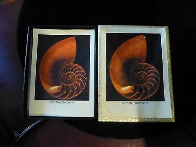 Box Of Antioch Book Plates-42 Unused Pieces, In Original Box-Conch Shell