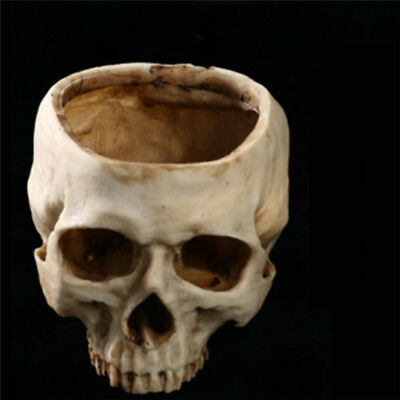 Gothic Skull Cigarette Ashtray Container Box Bar Skeleton Head Pot Halloween