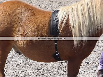 Miniature & Small Pony Lunging Roller - Quality UK Made Roller in two sizes