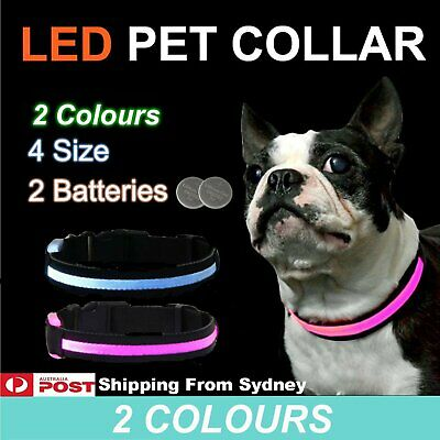 1x LED Pet Collar Pets Dog Walk Safety Flashing Light Leash Glow In The Dark Par
