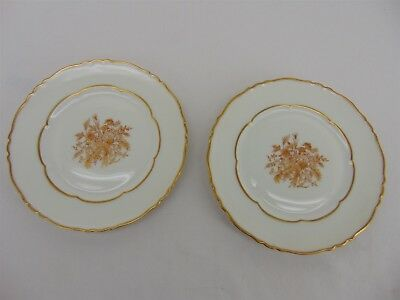 """Set of 2 HAVILAND Floreal Gold Flowers Scalloped 6.5"""" Bread & Butter PLATES"""