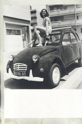 1983 Citroen 2CV Topiary ORIGINAL Factory Photograph wy3158