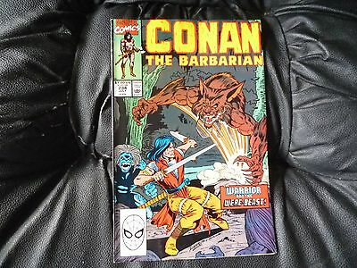 Conan the  Barbarian #  234 in nice condition  but for slight damp problem