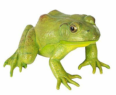 Safari Ltd Incredible Creatures American Bullfrog