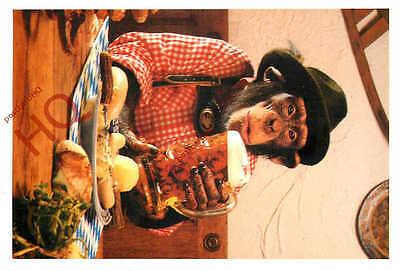 Picture Postcard:-Monkey, Chimpanzee Drinking Beer