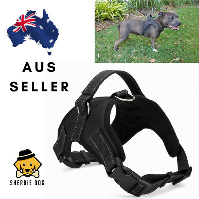 Dog Harness with Handle, large,small, medium Staffy/PitBull/Border Collie/Kelpie