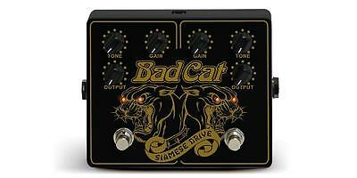 Shop Demo Bad Cat Siamese Drive - Twin Channel Overdrive / Distortion