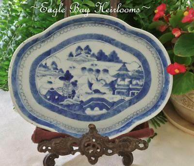 Chinese Export Porcelain- Blue Canton- Scalloped -TEA TRAY -PLATTER - 19th C.