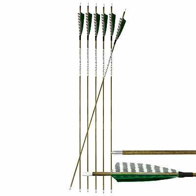 "6-er Pack Hawk Carbonpfeil Holzopik 31"" (78,7 cm) Spine 600 ø  5,7 mm"