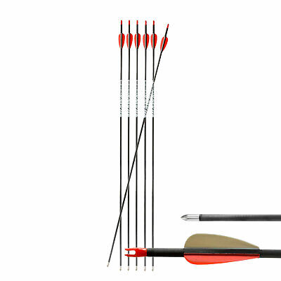 "6-er Pack Hawk Carbonpfeil 30"" (76 cm) Spine 800 ø 5,52 mm"