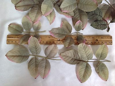 Lot Of Leaves For Millinery Decoration Green & Pink Ombre Wired