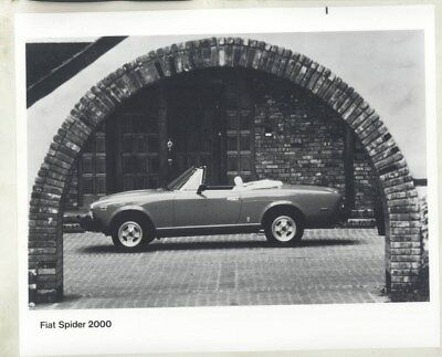1981 Fiat Spider 2000 Convertible ORIGINAL Factory Photograph wy3698